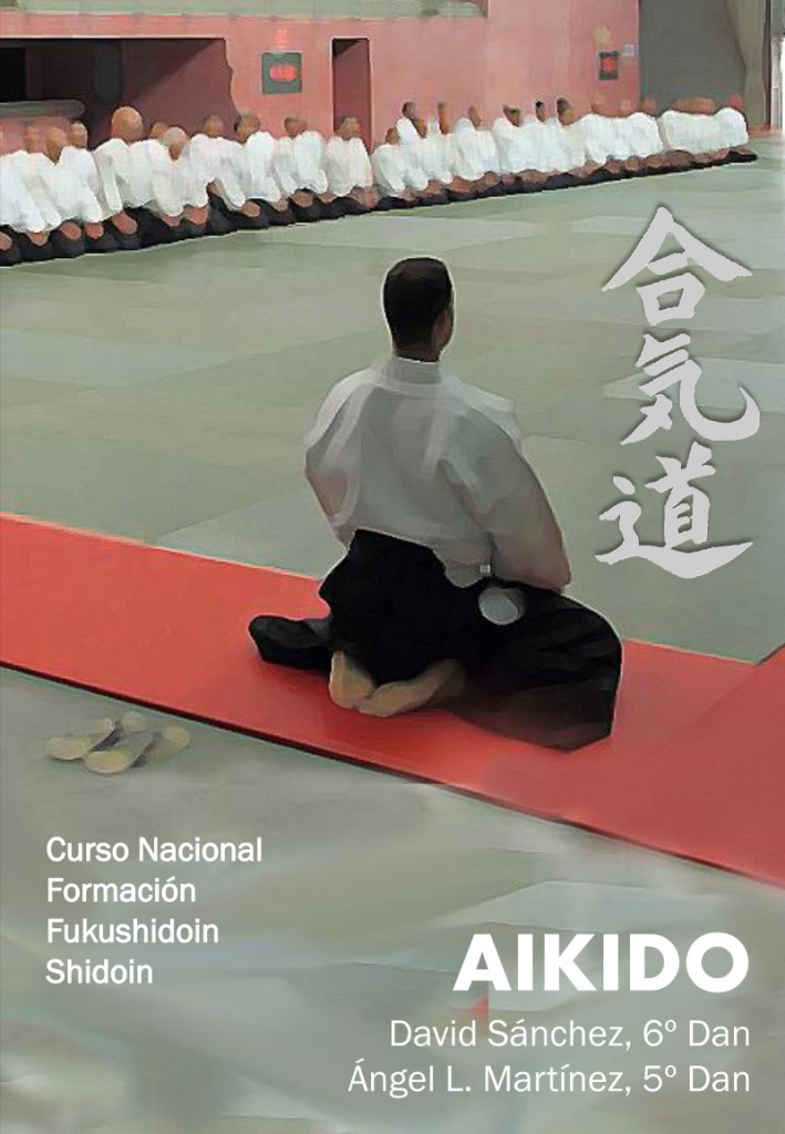 curso nacional aikido santander