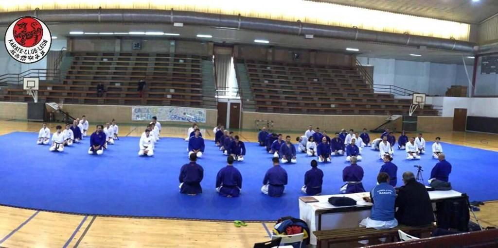 karate club curso